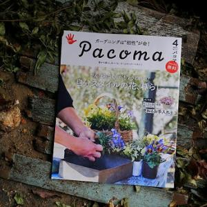 ホームセンターマガジン「Pacoma」4月号!