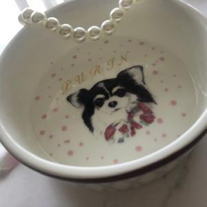 ポーセラーツ:愛犬へ★ペットフードボウル★