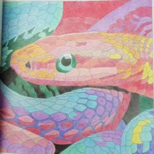 7-8-268 蛇