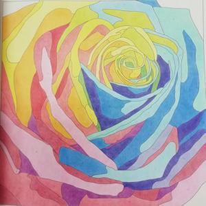 7-5-250 薔薇