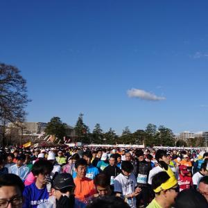 【当日】愛媛マラソン。