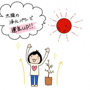 【無料ヒーリング】夏至☆お財布浄化ヒーリングします!