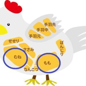 賢く使い分け!【鶏ムネ肉vs鶏モモ肉】「栄養・味・食感・特徴」の違いまとめ