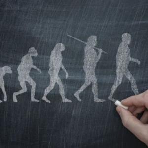 人類の文化的躍進のきっかけは、7万年前に起きた「脳の突然変異」だった:研究結果 WIRED.jp