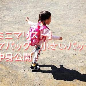 【ミニマリスト】2歳半ママバッグ、小さいバッグの中身を公開!【2018年版】