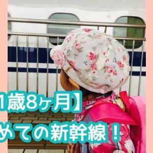 【1歳8ヶ月】赤ちゃんとママ二人旅!初めて新幹線に乗ってみた!