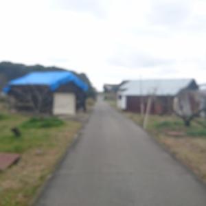 楠本神社(岸和田市)