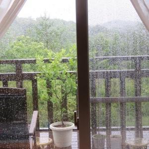 激しい雨で…