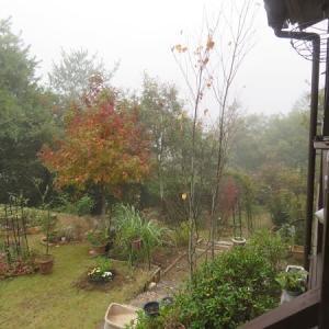 霧のゆく音~♡