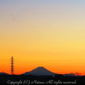 富士山が見えると