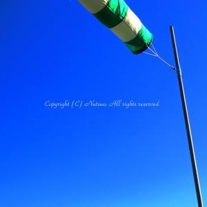 本日の1枚(青い空とブルーな風の日)