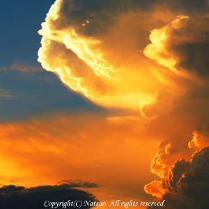 本日の1枚(超絶雲)