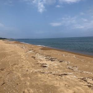 2020年6月28日、上木海岸キス釣り