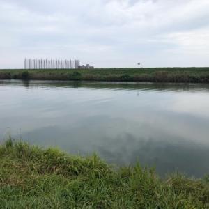2020年10月3日、梯川ハゼ釣り