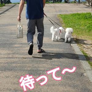 島根〜鳥取 後編