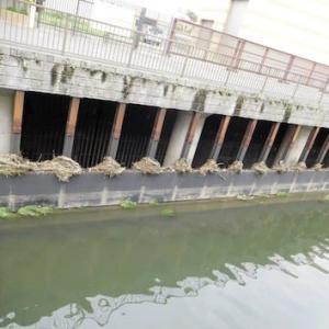 川の氾濫調整施設守る