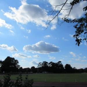 青空と風の午後