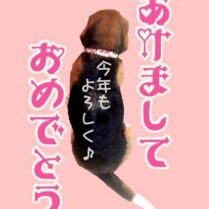 \(^∇^)≪★祝☆あけおめ☆祝★≫(^∇^)/