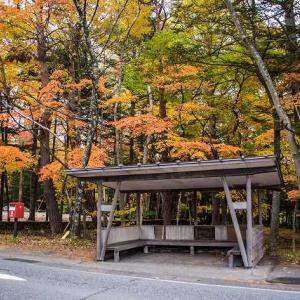 軽井沢の秋色  大阪から軽井沢出発天に1800km走破