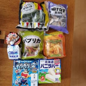 業務スーパー購入品~野菜が高いから冷凍野菜も買ってみる