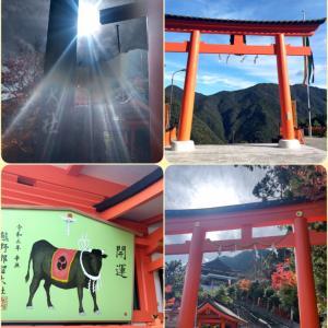 【伊勢・熊野古道の旅2】