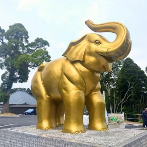 「日本一宝くじが当たるお寺」長福寿寺にまた行ってきました!