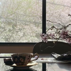 雪の舞うお花見ティータイム