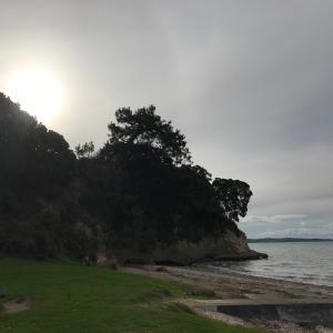 コロナが復活したニュージーランド