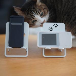 (猫1218)札幌往来自粛令に(||゚Д゚)ってなる飼い主とスマホスタンドをチェックする愛猫と