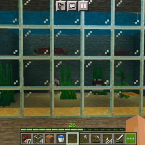 マイクラ おうち水族館をつくる 魚の捕まえ方や海藻の採取など
