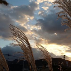 寒い夜はホットレモンとコタツで…夢町高校文化祭…いつかどこかで…14
