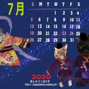 オリジナルカレンダー7月