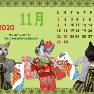 ぎんネコはうすオリジナルカレンダー11月