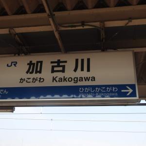 加古川駅/JR西日本/JR神戸線・他/兵庫県加古川市/2019年4月(4月9日)