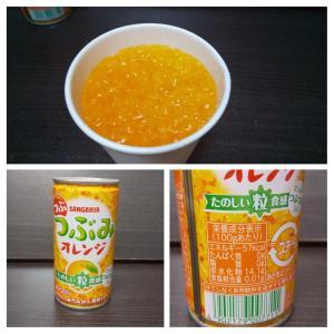 サンガリア/つぶみオレンジ/190g缶/2個100円+税