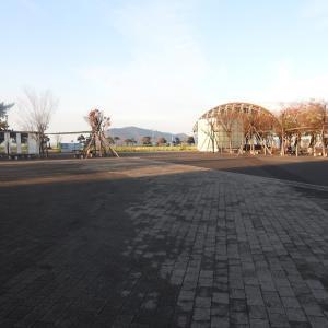 高松港①/香川県高松市/2020年12月(12月29日)