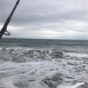 shvaの釣り日記 №114