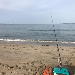 418の釣り日記 №118