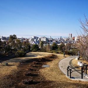目黒天空庭園は都会のオアシス