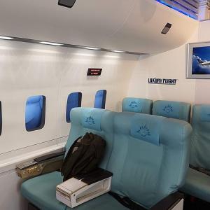 LUXURY FLIGHT で B737操縦
