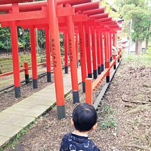 【子育て情報】大杉神社(稲敷市)