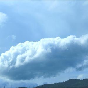 色んな雲~