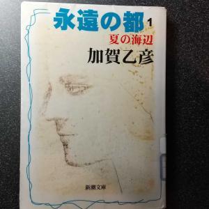 読書(永遠の都 1 夏の海辺)