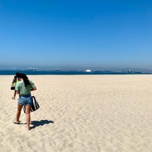 【注意して!】ロサンゼルスのビーチに潜むヤツ