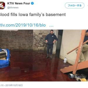 ブギーマンかジェイソンの仕業か リアルに血だらけの地下室は閲覧要注意