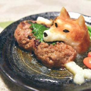 """柴犬の""""おろしハンバーグ""""に「可愛い過ぎて食べられません」「ワンダフル」感嘆の声"""