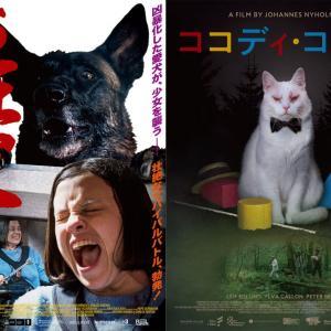 """犬と猫が、怖い。 「シッチェス映画祭2020」""""人間を恐怖のドン底に叩きつける""""犬猫写真が解禁[ホラー通信]"""