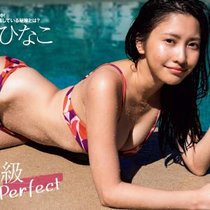 最上級 Perfect パーフェクトビキニ 佐野ひなこ 2020