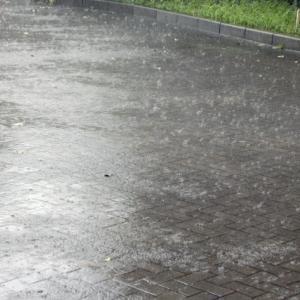 雨だからといって決して暇ではないセミリタイア主夫