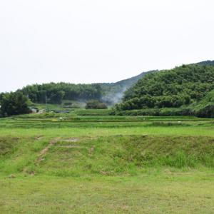 山田寺跡、観音堂